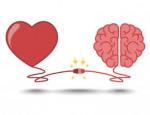هل القلب هو مركز المشاعر والعواطف أم مجرد مضخة للدم!؟