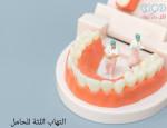 التهاب اللثة للحامل - دواء